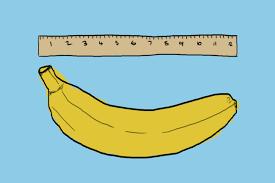 Malý-penis